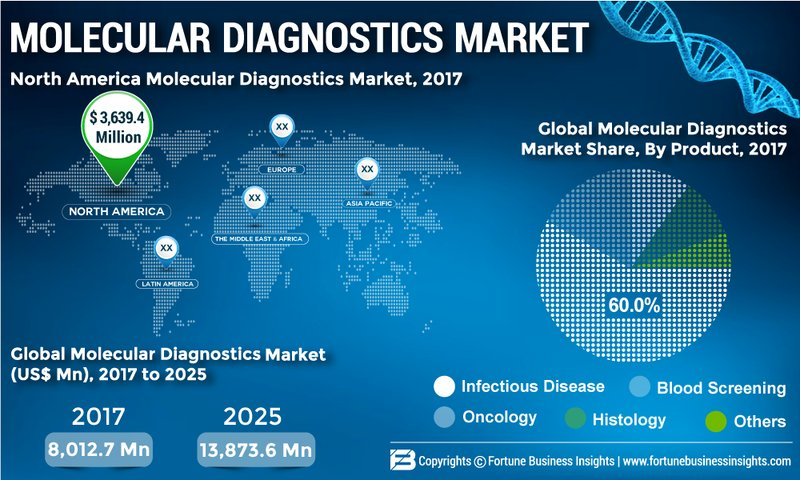 Molecular Diagnostics Market 2019 Global Industry Size, Revenue